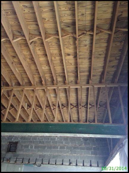 mold in wooden joists of the ceiling