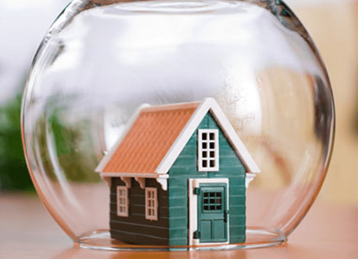 house in a glass bubble