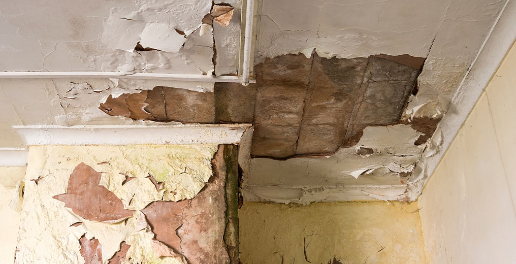 property in need of water damage restoration in arlington heights, il