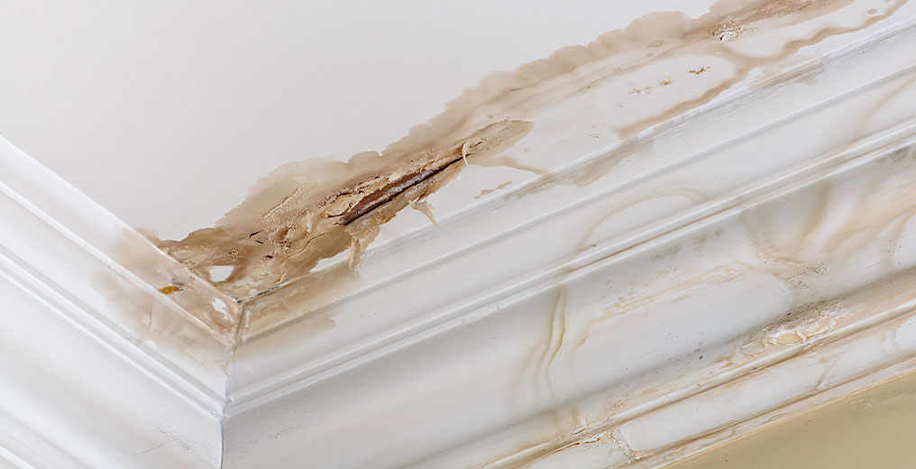 property in need of water damage restoration in chicago, il